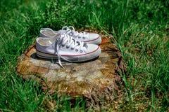 Chaussures de sports sur le chanvre dans l'herbe verte Image stock