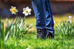 Chaussures de sports sur une herbe verte fraîche Photo libre de droits