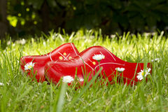 Chaussures en bois dans l'herbe Photographie stock