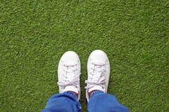 Chaussures en cuir de toile blanche sur la pelouse verte Image stock
