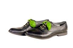 Chaussures en cuir italiennes d'isolement Photographie stock libre de droits