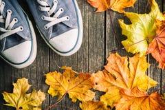 Chaussures et feuilles d'automne Photo stock