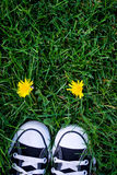 Chaussures et fleur Images libres de droits