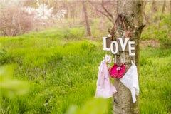 Chaussures et robe de bébé roses accrochant sur l'arbre Photos stock