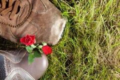 Chaussures et roses Images libres de droits