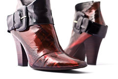 Chaussures femelles de mode Images stock