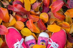 Chaussures femme et enfant se tenant pendant beaucoup de l'automne tombé Photographie stock libre de droits