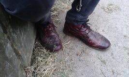 Chaussures noires et rouges étranges et uniques Photos libres de droits