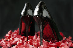 Chaussures noires pour des femmes Photographie stock libre de droits