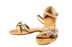 Chaussures, paires de chaussures femelles Photographie stock