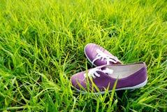 Chaussures pourpres au-dessus d'herbe verte de nature Photos libres de droits