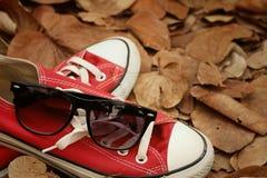 Chaussures rouges avec des lunettes de soleil sur le fond brun de feuilles Photo stock
