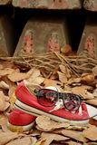 Chaussures rouges avec des lunettes de soleil sur le fond brun de feuilles Images stock