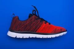 Chaussures rouges et noires de femme de sport sur le fond bleu Image stock