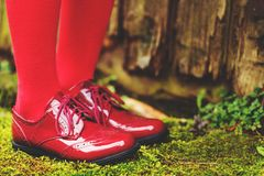 Chaussures rouges modernes de mode Photographie stock libre de droits