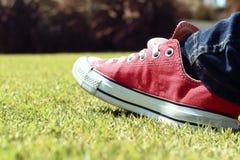 Chaussures rouges sur l'herbe - espadrilles Images stock