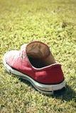 Chaussures rouges sur l'herbe - espadrilles Images libres de droits