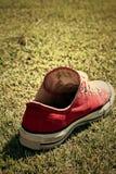 Chaussures rouges sur l'herbe - espadrilles Photographie stock
