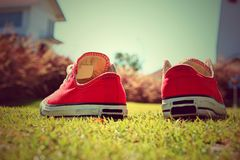 Chaussures rouges sur l'herbe - espadrilles Image stock