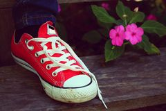 Chaussures rouges sur un plancher en bois - espadrilles Photos libres de droits