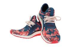 Chaussures sportives sur un fond blanc Image libre de droits