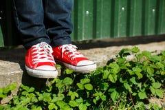 chaussures sur le béton parmi des buissons Image libre de droits