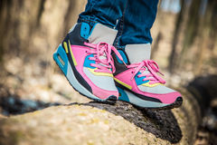 Chaussures sur un arbre dans la forêt Photos libres de droits