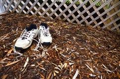 Chaussures usées de jardin Images stock