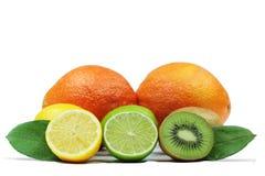 Chaux, citron et oranges frais sur le fond blanc Image stock