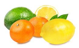 Chaux, mandarines fraîches et citron d'isolement sur le blanc Photo libre de droits