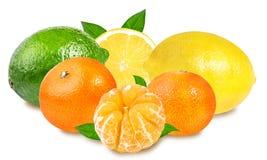 Chaux, mandarines fraîches et citron d'isolement sur le blanc Photographie stock libre de droits