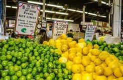 Chaux principales - ferme, FL Photos stock