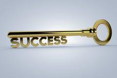 Chave ao sucesso Foto de Stock