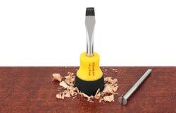 Chave de fenda com o parafuso na madeira Fotografia de Stock