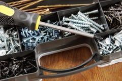 A chave de fenda encontra-se em uma caixa plástica com vários parafusos Imagens de Stock