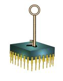 Chave do chip de computador Imagens de Stock Royalty Free