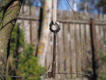 A chave na floresta em um ramo de árvore é uma combinação universal de funcionalidade e de elegância fotos de stock