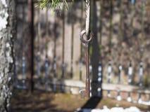 A chave na floresta em um ramo de ?rvore ? uma combina??o universal de funcionalidade e de eleg?ncia fotografia de stock