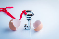 A chave nova estoira do shell de ovo Fotos de Stock