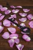 Chave preta do close up com pétalas cor-de-rosa Fotos de Stock Royalty Free