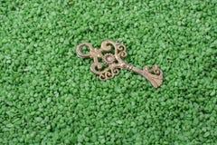 Chave retro do estilo na areia verde imagem de stock royalty free