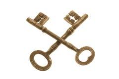 Chaves de esqueleto Imagens de Stock