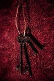 Chaves de esqueleto do vintage Fotos de Stock Royalty Free