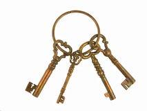 Chaves de esqueleto em um anel Imagem de Stock Royalty Free