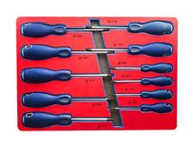 Chaves de fenda do tipo TORX Foto de Stock