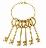 Chaves do ouro Imagem de Stock