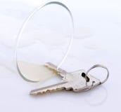 Chaves por um vidro Imagem de Stock