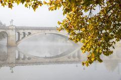 Chaves, Portugal. Yellow and green autumn leaves with the Ponte Nova New Bridge in the background. Chaves, Portugal Royalty Free Stock Image