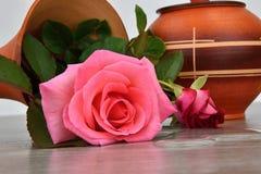 Chavirez le vase à fleur avec des roses L'eau coulée hors d'un vase Vase sur une base en bois Image stock