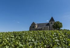 Chavot Church Vineyards. The church of Chavot with the vineyards in the Champagne district on a summers day, France Stock Photos